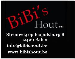 banner_bibishout